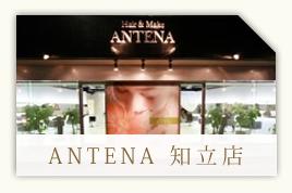 ANTENA 知立店クーポン